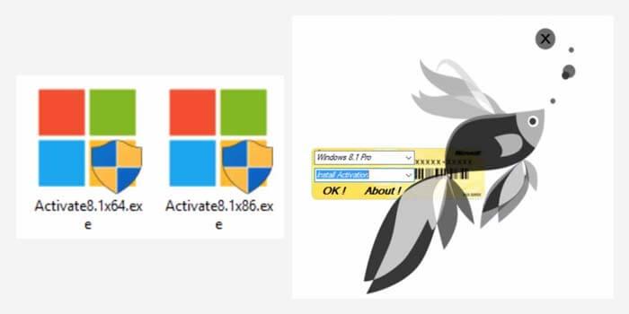Activate Windows 8 Using Activator