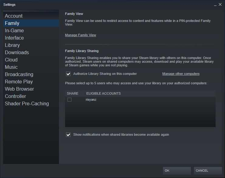 Authorize PC For Steam Family Sharing